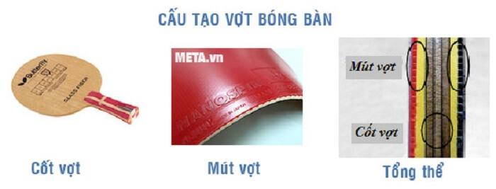 Cau-tao-vot-bong-ban